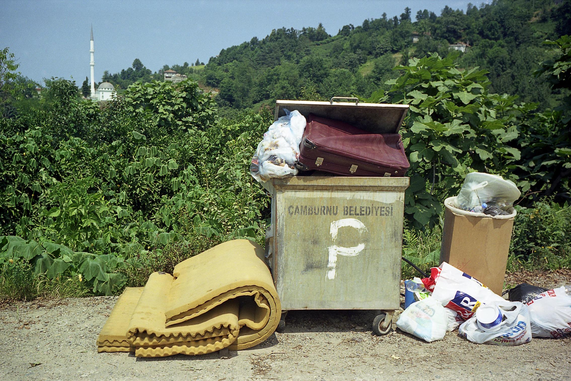 Altcine polluting paradise for Garten eden